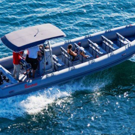 Nautique services La Rochelle - Vente de bateau à La Rochelle - Marshall M8